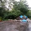 Śmieciowa tragedia